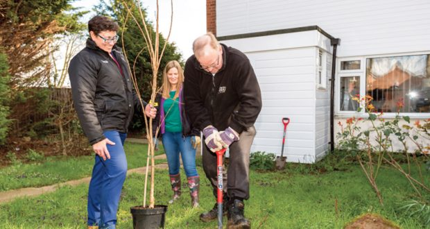 Our latest tree planting efforts