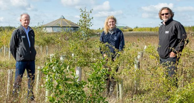18,000 trees and counting at Abberton